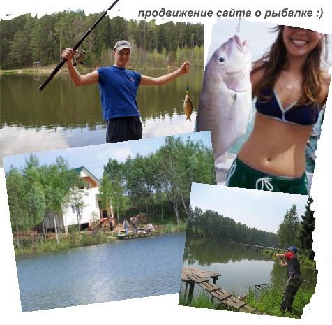 Продвижение рыбного сайта